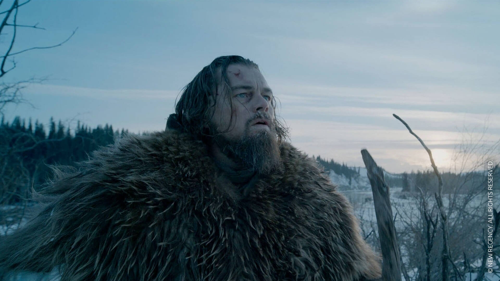 DiCaprio, pariuri și ficat crud de bizon – The Revenant: Legenda lui Hugh Glass!